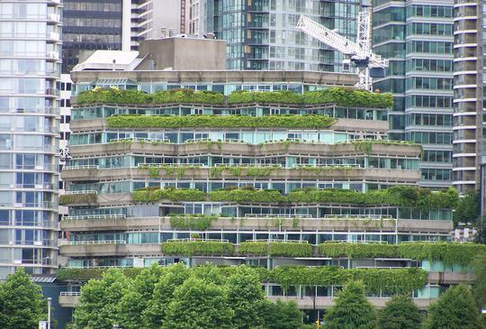 Green Roof Vancouver BC
