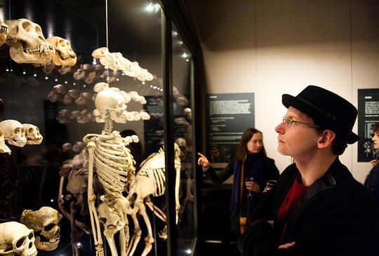 Looking at skeletons